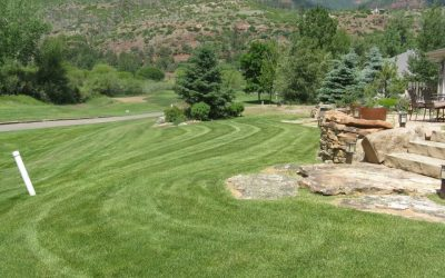 Customized Yard Maintenance Plans By AVL