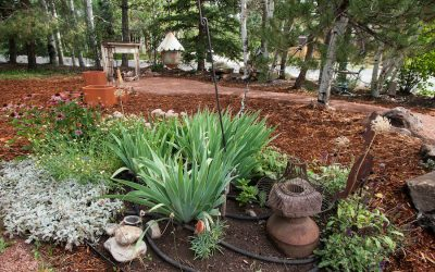 All About Mulch: Tips and Techniques from AVL Landscaping